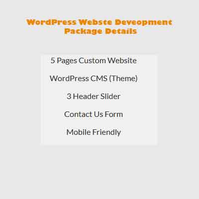 WordPress website development package 1