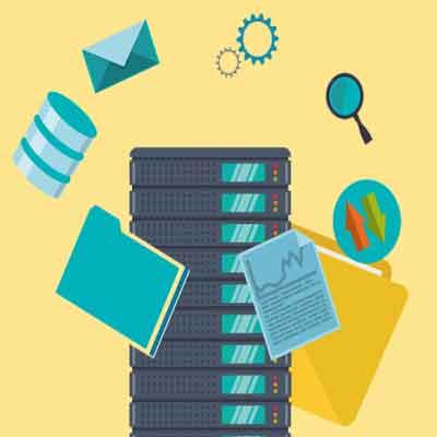 business website hosting plan