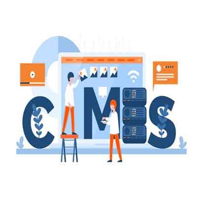 cms business website development package