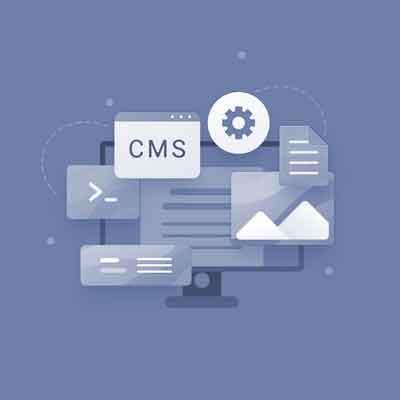 cms development standard package