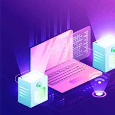 professional linux website hosting plan