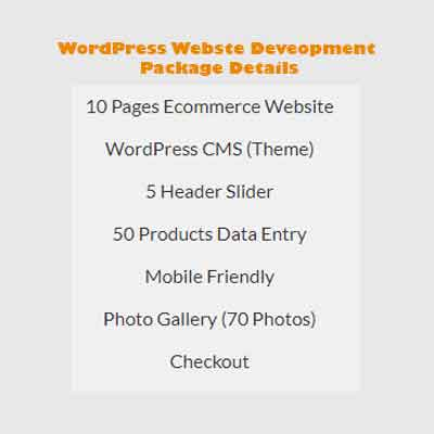 wodpress web development price 3