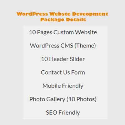 wordpress web development pricing package 2