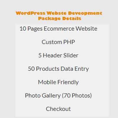 wordpress website development package 4