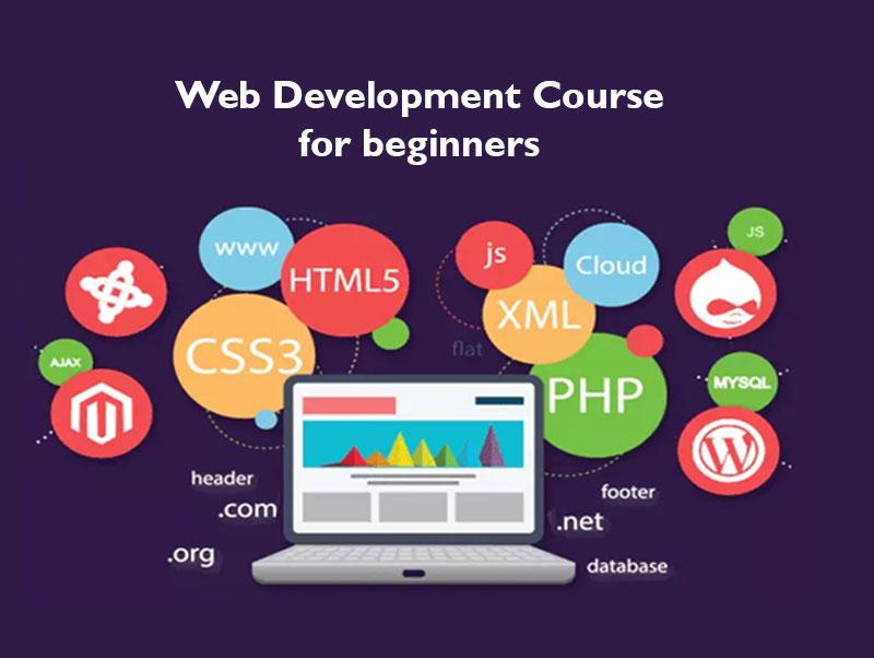 best website development course in sukkur